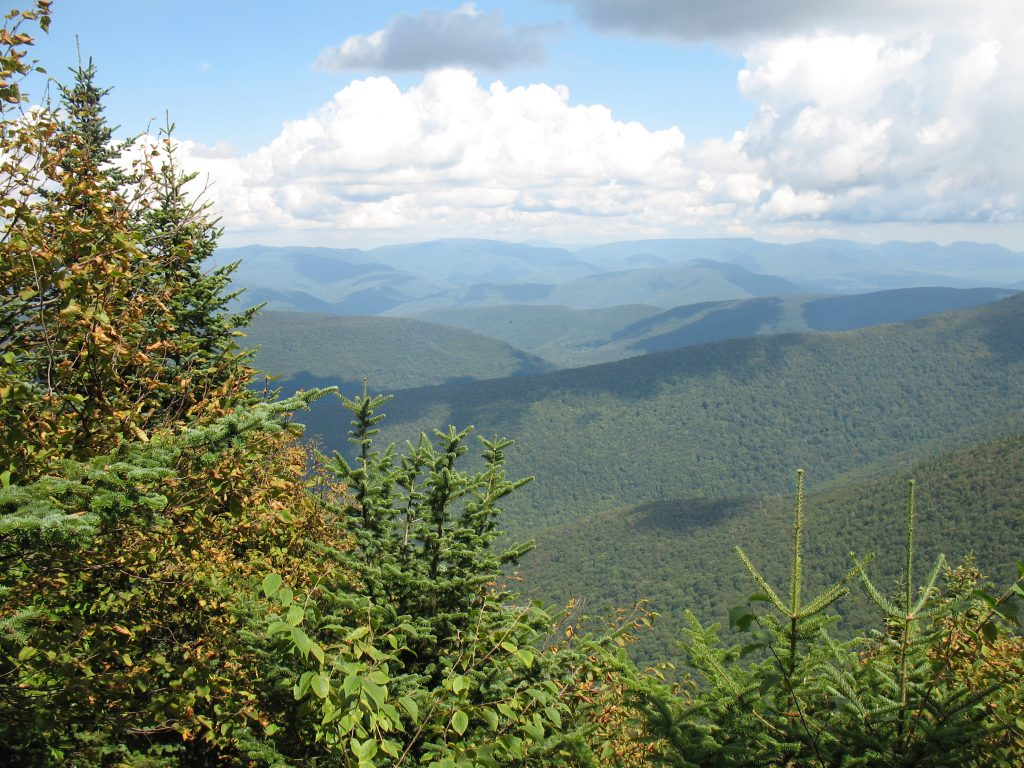 A view near the summit of Cornell Mountain