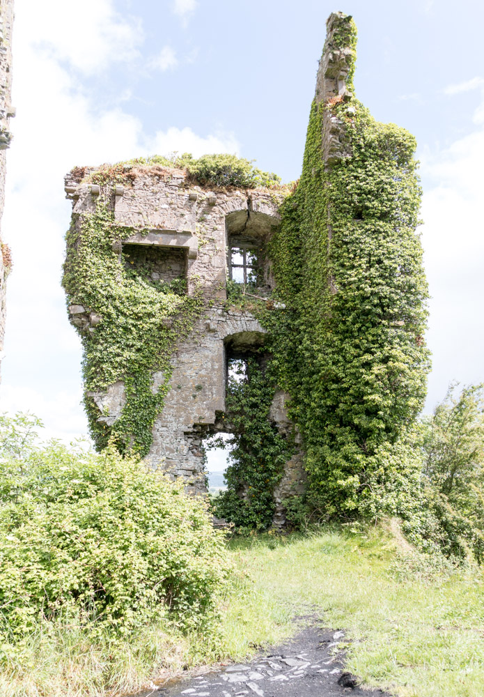 Carrigogunnell Castle Ruins, near Limerick, Ireland