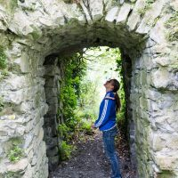 Carrigogunnell Ruins Archway